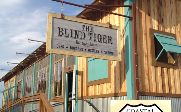 The Blind Tiger Buys Second Lot on Beach Blvd Bay St Louis, MS