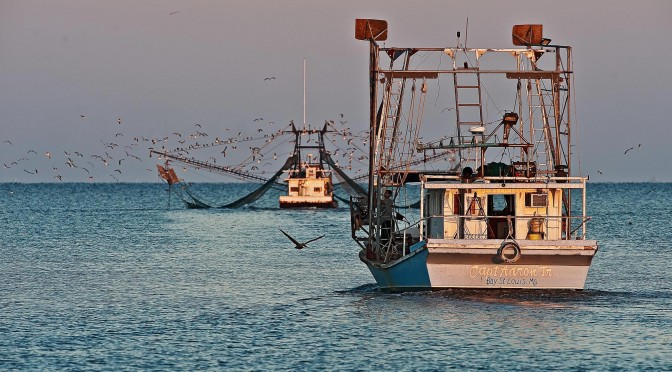 Photo of Shrimp Boat leaving Bayou Caddy into the Gulf of Mexico along Coastal Mississippi. Photo by Tom Koger